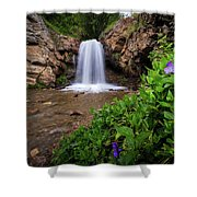 Adams Canyon Lower Falls Spring Shower Curtain