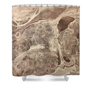 Adaptation Shower Curtain by Sonya Wilson