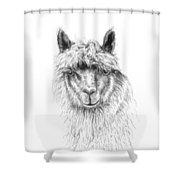 Addi Shower Curtain