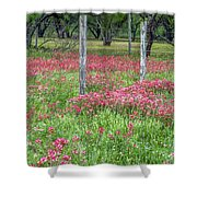 Adding A Splash Of Color-indian Paintbrush In Texas Shower Curtain