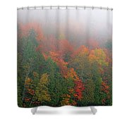 Adirondack Autumn Colors Shower Curtain