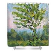 Adirondack Tree Shower Curtain