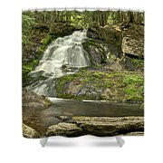 Adler Falls Shower Curtain