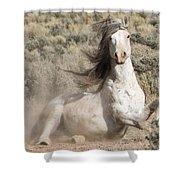 Adobe Wind Shower Curtain