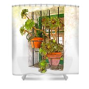 Adobe Window Shower Curtain