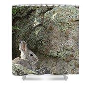 Adobetown Bunny Shower Curtain