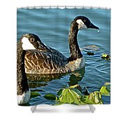 Adolescents Shower Curtain