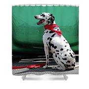 Happy Dalmatian  Shower Curtain