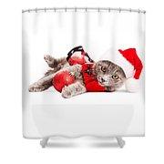 Adorable Christmas Kitten Over White Shower Curtain