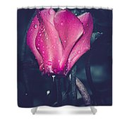 Adore Shower Curtain