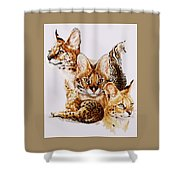 Adroit Shower Curtain by Barbara Keith