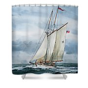 Adventuress Shower Curtain