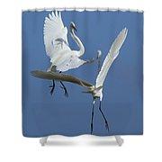 Aerial Ballet Shower Curtain