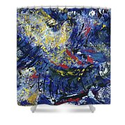 Aerial View/night City Shower Curtain