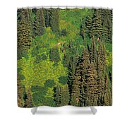 Aerial View Of Forest On Mountainside Shower Curtain