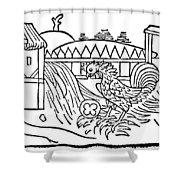 Aesop: Cock & Gem Shower Curtain