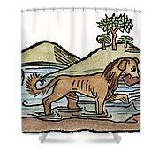 Aesop: Dog & Shadow, 1484 Shower Curtain