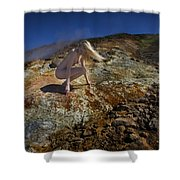 Affinity Shower Curtain