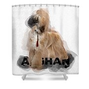 Afghan No 07 Shower Curtain