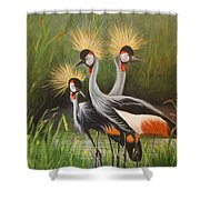 Afrian Crowned Cranes Shower Curtain
