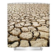 Africa Cracked Mud Shower Curtain by Larry Dale Gordon - Printscapes