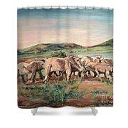 Africa Shower Curtain by Rosemary Kavanagh