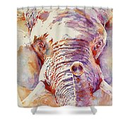 African Elephant _ The Governor Shower Curtain