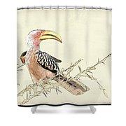 African Flying Banana Bird Shower Curtain