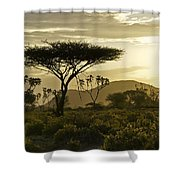 African Interlude Shower Curtain