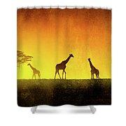 African Landscape Shower Curtain