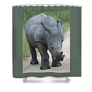 African Rhino Shower Curtain