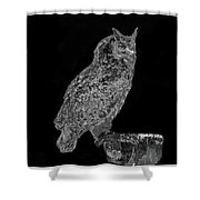 African Spotted Eagle Owl Shower Curtain