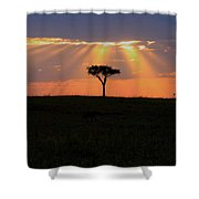African Sunset Rays Shower Curtain