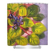 African Violet Still Life Oil Painting Shower Curtain