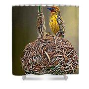 Weaver Nest Shower Curtain