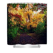After Fall II Shower Curtain