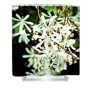 After The Battle Comes The Beauty Of Floral Blessings Shower Curtain