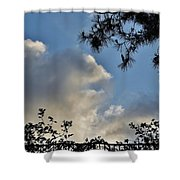 After The Rain I Shower Curtain