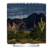 After The Rain In The Superstitions  Shower Curtain