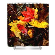 After The Rains Of Autumn Shower Curtain