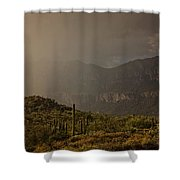 After The Spring Rain  Shower Curtain