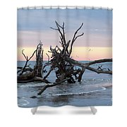 After The Storm At St. Helena Shower Curtain