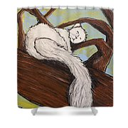 After The White Squirrel Festival Shower Curtain