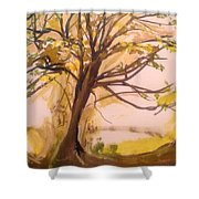 Afternoon Alone  Shower Curtain
