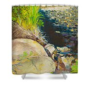 Afternoon Beside The Lane Cove River Shower Curtain