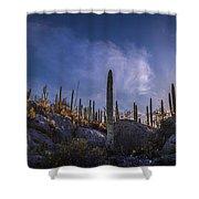 Afternoon Desert Scene Shower Curtain
