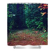 Afternoon Journey Shower Curtain