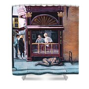 Afternoon On Ithaca Commons Shower Curtain