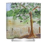 Afternoon On The Farm 2 Shower Curtain