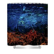 Afternoon On The Reef Shower Curtain